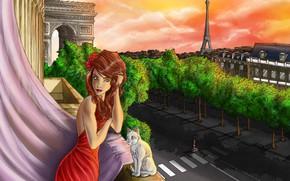 Картинка кошка, девушка, Париж