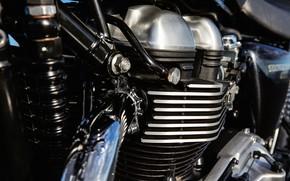Картинка двигатель, мотоцикл, хром, железки, Triumph Thruxton, патрубки