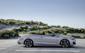 Картинка серый, Audi, растительность, кабриолет, Audi A5, сбоку, A5, 2019, A5 Cabriolet