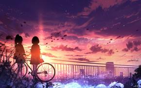 Картинка закат, велосипед, город, девочки