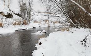Картинка Вода, Природа, Зима, Деревья, Река, Снег, Камни, Ручей, Речка, Деревья Зимой, Река Назия