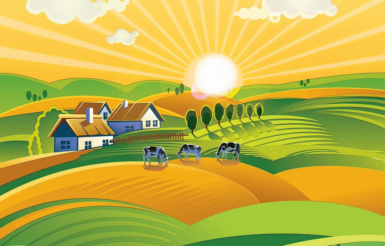 Фото обои солнце, холмы, коровы, луга, ферма