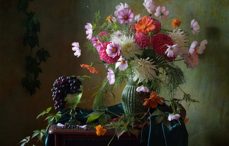Фото обои цветы, ягоды, бокал, виноград, гроздь, ткань, ваза, натюрморт, космея, Мила Миронова, далия