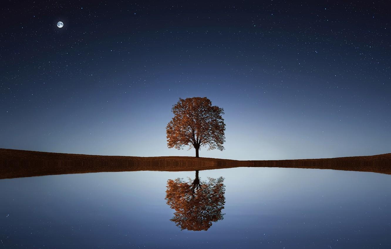 Фото обои звезды, ночь, безмятежность, красота, простор, space, одинокое дерево, night, водная гладь, stars, beauty, serenity, очарование, …