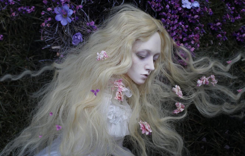 Обои цветы, Кукла, девушка, волосы. Разное foto 8