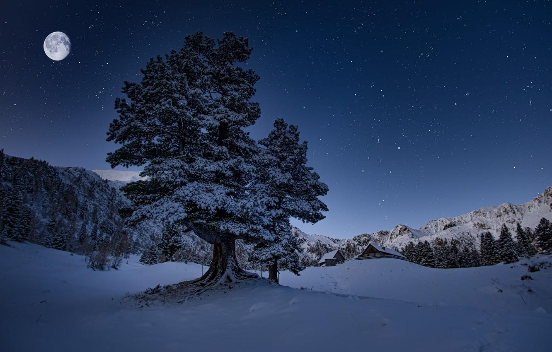 Фото обои зима, снег, деревья, пейзаж, горы, ночь, природа, луна, дома, звёзды, Австрия, леса, коммуна, Friedrich Beren, …