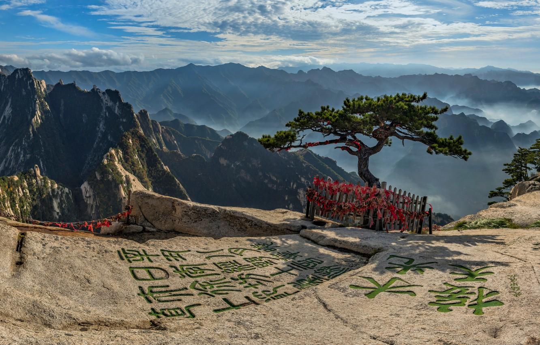 Фото обои горы, дерево, Китай, иероглифы, Mount Hua