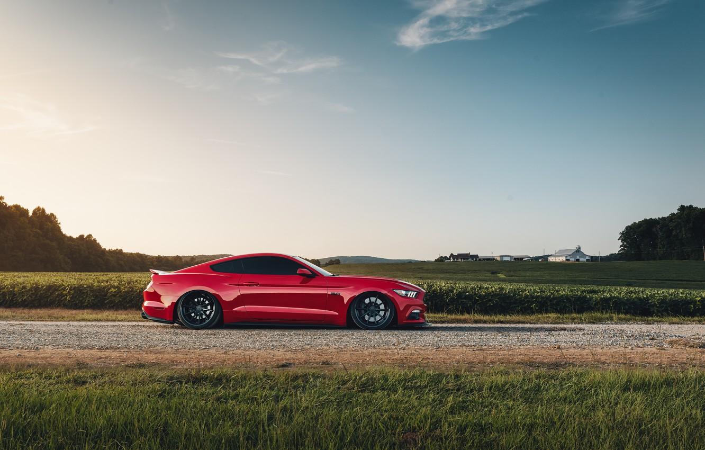 Фото обои Mustang, Ford, вид сбоку, 2018, Mustang GT, by Jimmy Zhang