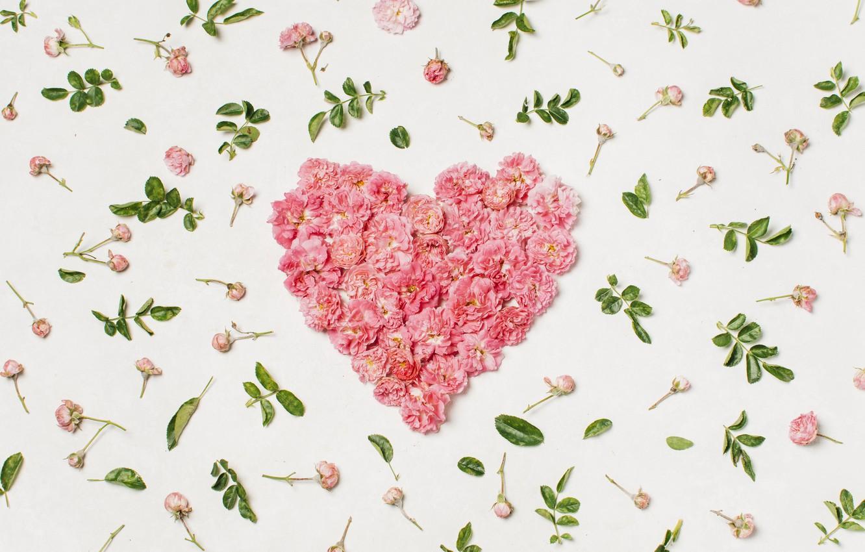 Фото обои любовь, цветы, сердце, лепестки, love, heart, pink, flowers, beautiful, romantic, valentine, petals, floral