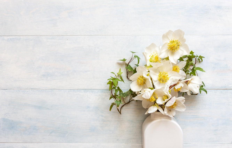 Фото обои цветы, букет, ваза, белые, морозник