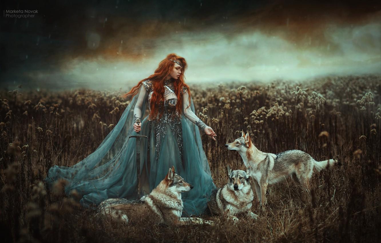 Фото обои девушка, меч, платье, волки, рыжая, рыжеволосая, Marketa Novak, Zuzana Kushniruk