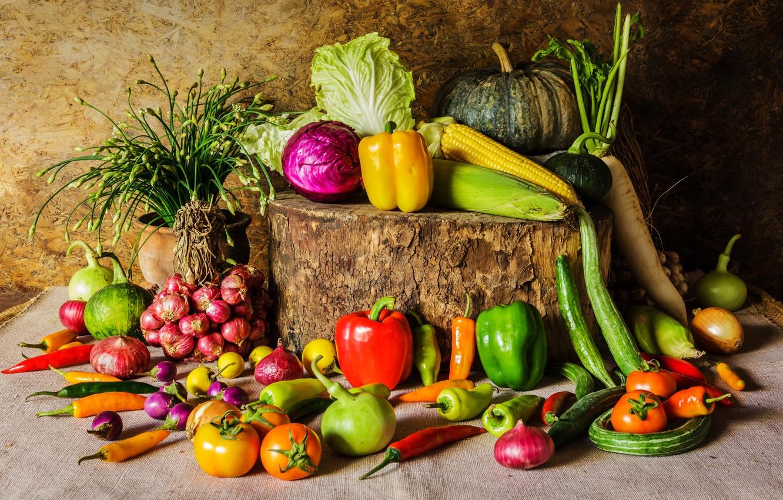Фото обои пень, кукуруза, лук, тыква, перец, овощи, помидоры, морковь, капуста, огурцы, репчатый