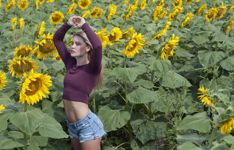 Фото обои лето, девушка, подсолнухи, природа