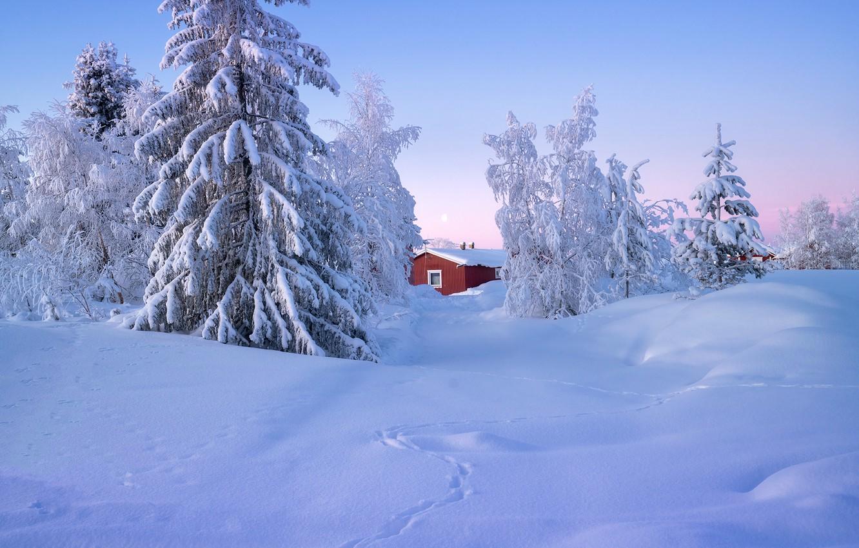 Фото обои зима, снег, деревья, пейзаж, природа, дом, ели, Швеция, Андрей Базанов