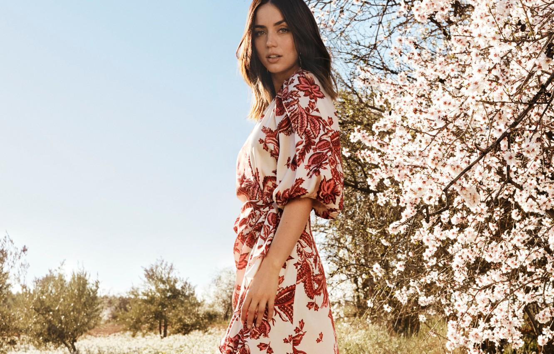 Фото обои взгляд, актриса, шатенка, красотка, цветущее дерево, ana de armas, ана де армас