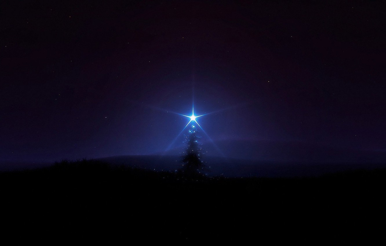 Фото обои тьма, мрак, звезда, ёлка, одинокое дерево, темное небо, в темноте