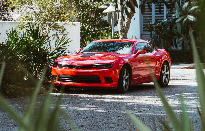 Фото обои машина, красный, улица, суперкар, спорткар, chevrolet, chevrolet camaro