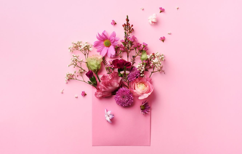 Фото обои цветы, фон, конверт