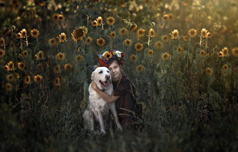 Фото обои лето, собака, девочка