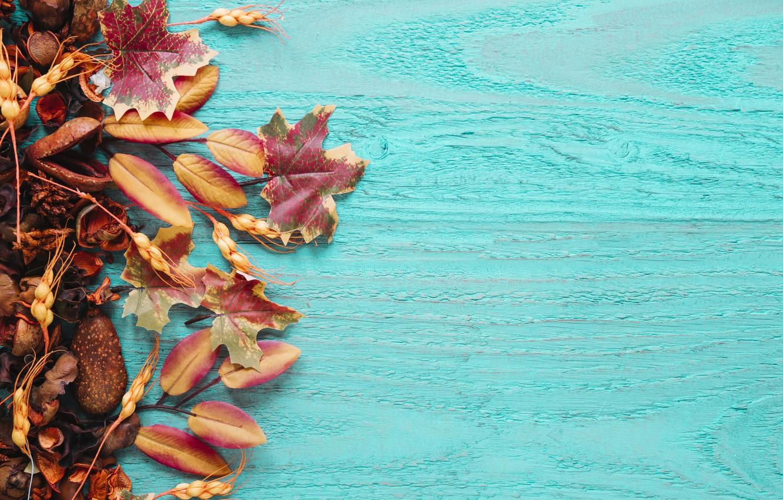 Фото обои осень, листья, фон, дерево, colorful, фрукты, wood, background, autumn, leaves, сухофрукты, maple