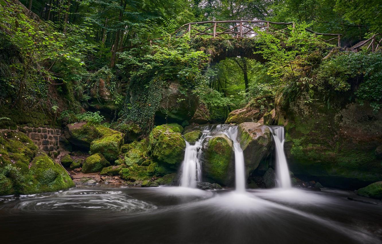 Фото обои лес, мост, река, камни, водопад, мох, Люксембург, Luxembourg, Мюллерталь, Mullerthal, Schiessentümpel Waterfall, Black Ernz River, …