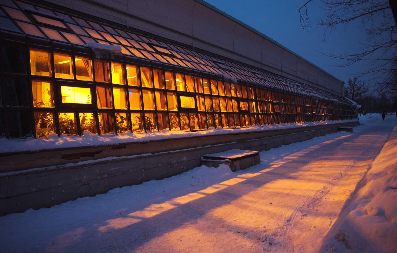 Фото обои light, road, blue, park, flowers, beautiful, winter, snow, evening, Moscow, holiday, snowflakes, plants, heat, boulevard, …