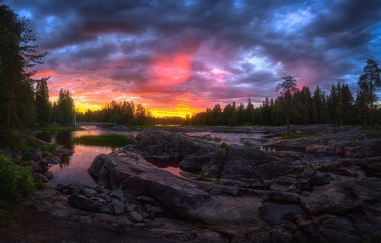 Фото обои лес, закат, речка, Финляндия, Kuusamo