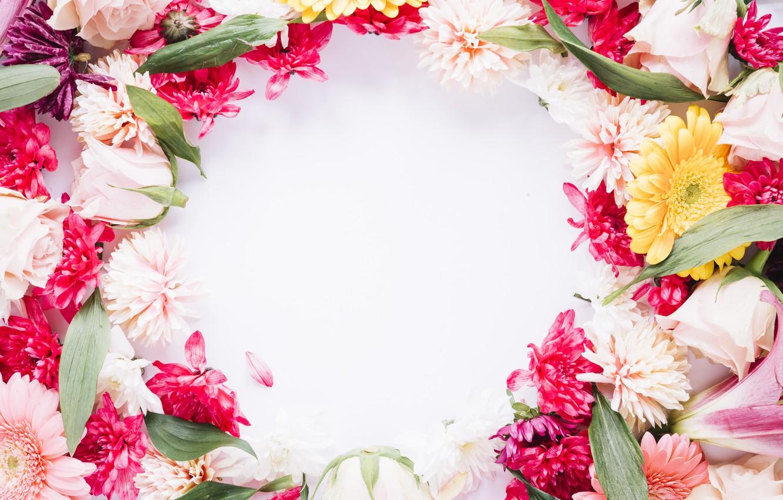 картинки поздравления цветы из фотографий словам нирсбаха, кубка