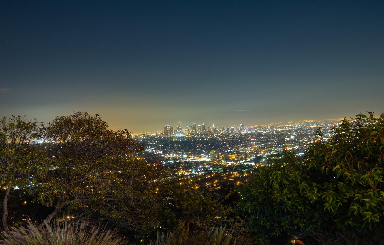 Фото обои Sky, Night, Los Angeles, Skyline, View, Trees