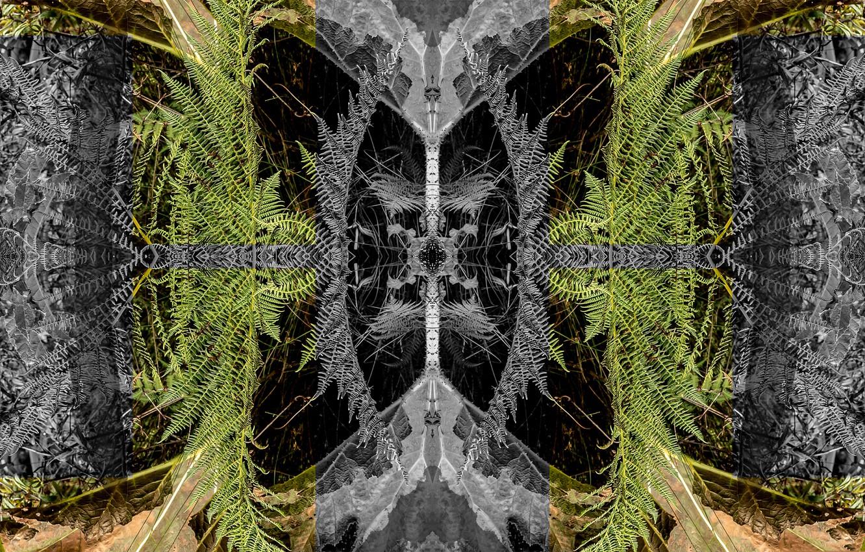 Фото обои отражение, хаос, симметрия, усор