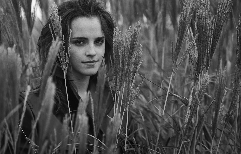 Фото обои поле, девушка, актриса, колосья, girl, Эмма Уотсон, Emma Watson, smile, actress