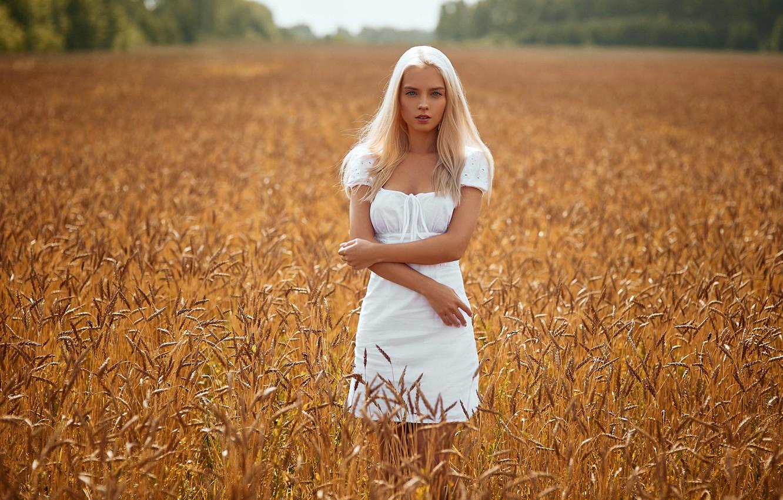 Фото обои поле, взгляд, солнце, деревья, природа, поза, модель, портрет, макияж, фигура, платье, прическа, блондинка, колосья, красотка, …