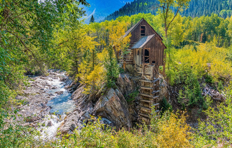 Фото обои осень, лес, деревья, река, Колорадо, водяная мельница, Colorado, Crystal Mill, Crystal River, Река Кристал, Кристал-милл