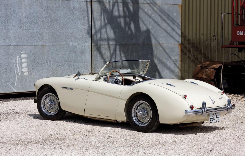 Фото обои Roadster, Le Mans, retro, Austin-Healey 100M