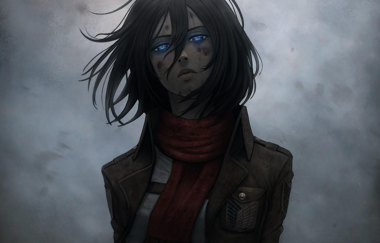 Фото обои эмблема, голубые глаза, серый фон, art, военная форма, Shingeki no Kyojin, Mikasa Ackerman, ссадины, красный …
