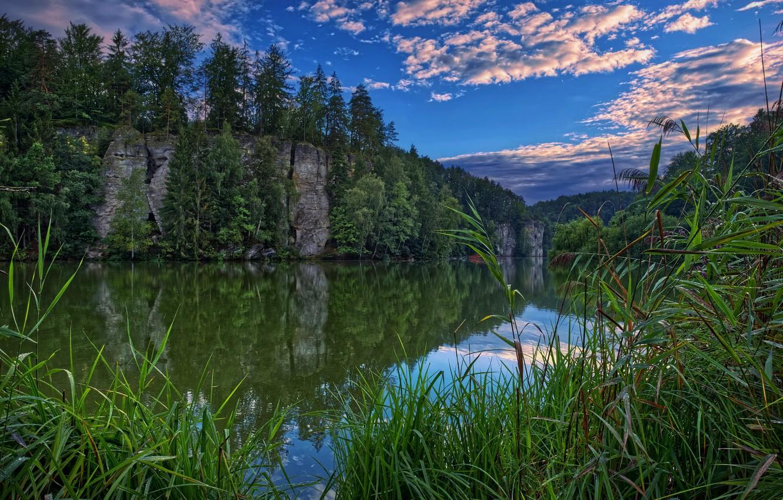 Фото обои лето, река, берег