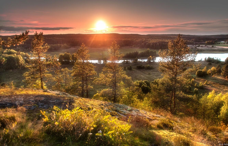 Фото обои лес, солнце, деревья, закат, природа, река, Столыпин Юрий