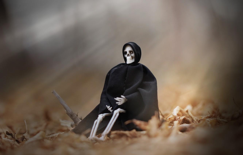 Фото обои осень, фон, скелет, мантия