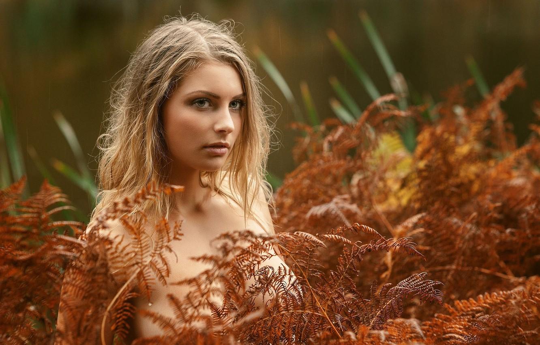 Фото обои осень, растения, блондинка, боке, Tonny Jørgensen