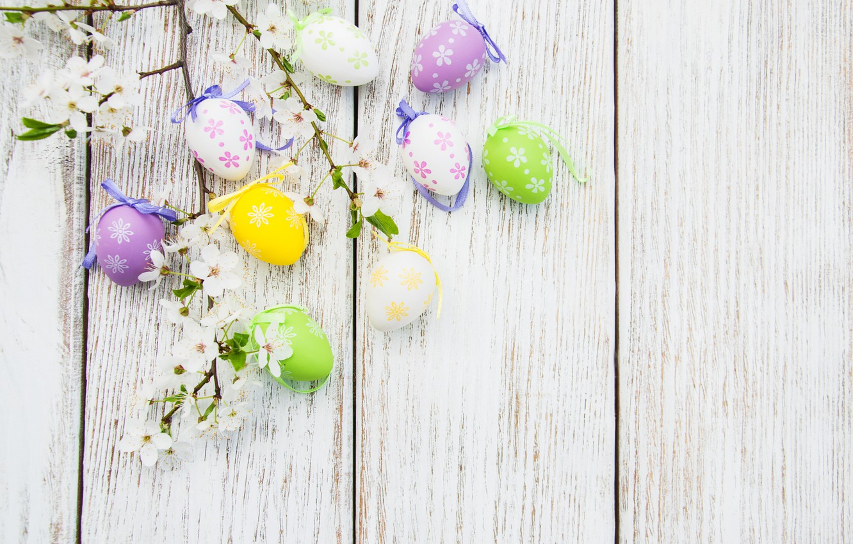 Фото обои цветы, яйца, colorful, Пасха, happy, wood, blossom, flowers, spring, Easter, eggs, decoration