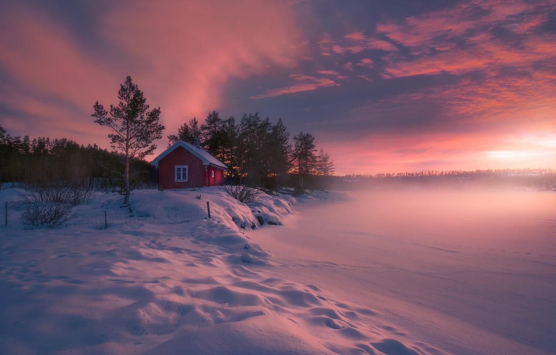 Фото обои дом, мороз, Норвегия, Norway, Ringerike