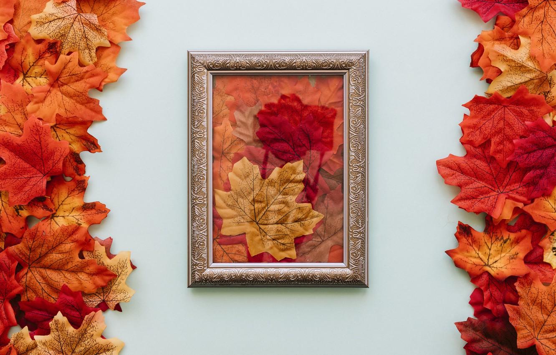 Фото обои осень, листья, фон, рамка, colorful, wood, background, autumn, leaves, осенние, fall, maple
