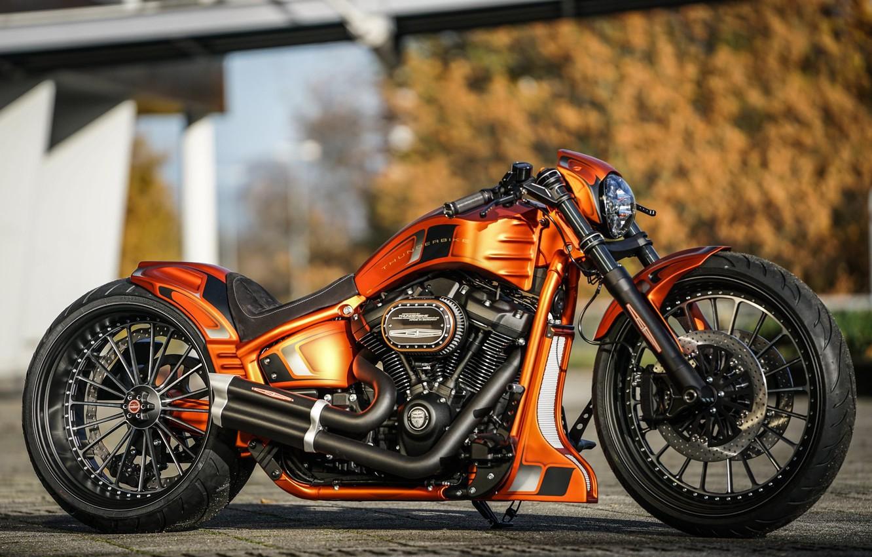 Фото обои Harley-Davidson, Custom, Thunderbike, FXBRS, Gp-Style