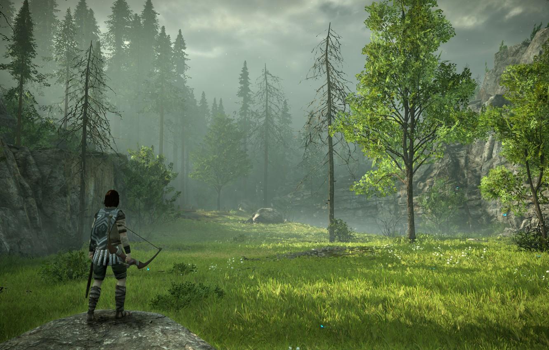 Фото обои лес, трава, луг, Shadow of the Colossus, В тени колосса