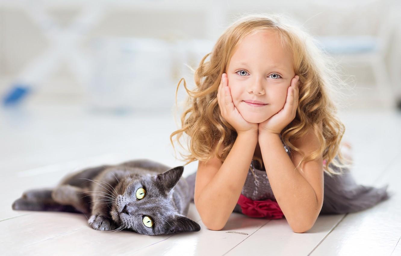 Обои серый фон, Девочка, Коты, кошки. Разное foto 6