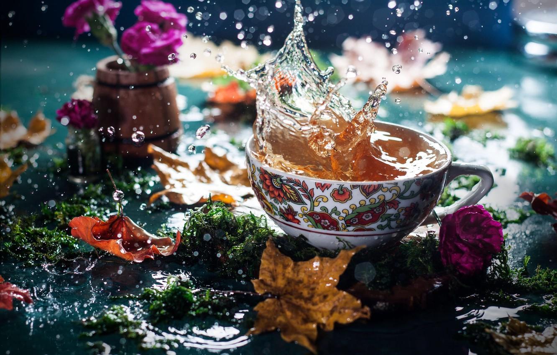 Фото обои осень, листья, вода, цветы, брызги, чай, мох, чашка, боке