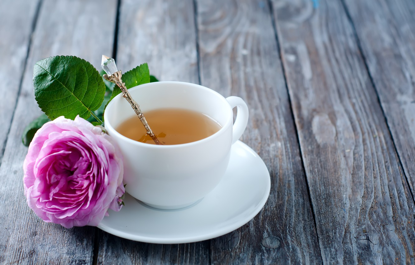 Фото обои роза, rose, flower, pink, cup, tea, чашка чая