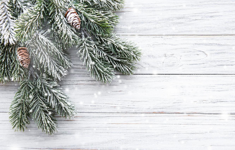 Фото обои снег, елка, Новый Год, Рождество, Christmas, шишки, wood, winter, snow, decoration, New year, fir tree, …