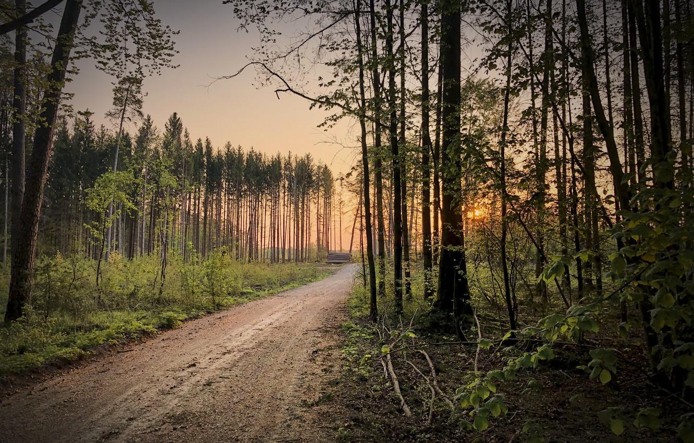 Фото обои Germany, Bavaria, Another sunrise, Emmerting