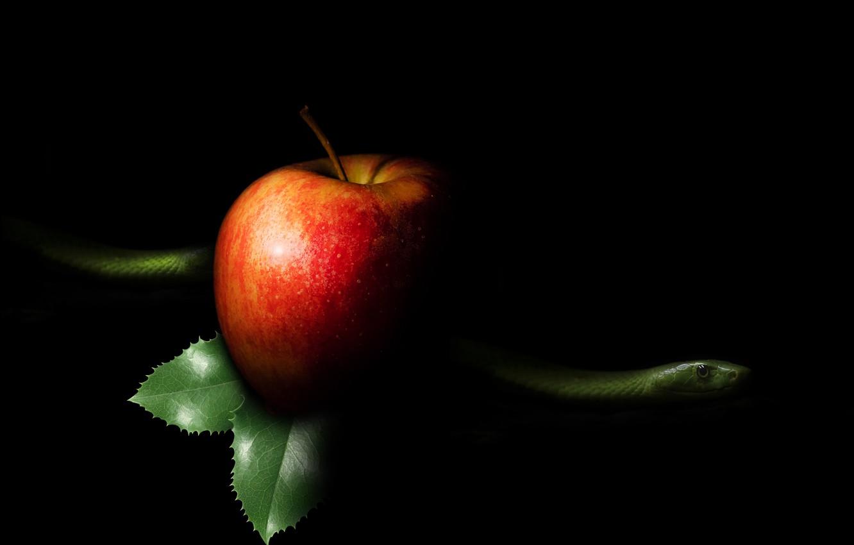 Фото обои Apple, snake, sin
